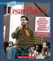 Cesar Chavez: Book by Josh Gregory