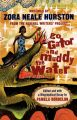 Go Gator and Muddy the Waters: Writings by Zora Neale Hurston from the Federal Writers Project: Book by Zora Neale Hurston