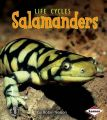 Salamanders: Book by Robin Nelson