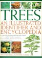 Trees An Illustrated Identifier And Encyclopedia (English) (Paperback): Book by Tony Russell, Catherine Cutler