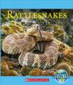 Rattlesnakes: Book by Josh Gregory