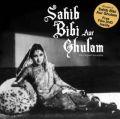 Sahib Bibi Aur Ghulam (English) (Paperback): Book by Jitendra Kothari, Dinesh Raheja