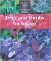 Trees and Shrubs for Foliage (English) (Paperback): Book by Glyn Church Firefly Books