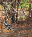 Wonders of the Indian Wilderness: Book by Erach Bharucha