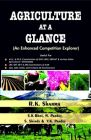 Agriculture at a Glance: an Enhanced Competition Explorer(Pbk): Book by Sharma, R. K. & Bhoi, S. K. & Pandey, N. &  Shinde, S. & Pandey, V. K.