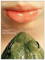 Epica Book 20: Europe's Best Advertising: Book by Erik Vervreogen ,Mark Tungate