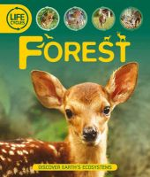 Life Cycles: Forest: Book by Sean Callery