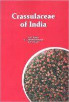Crassulaceae of India (English) (Hardcover): Book by U C BHattacharyya, N. B. Singh