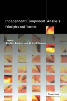 Independent Component Analysis: Principles and Practice