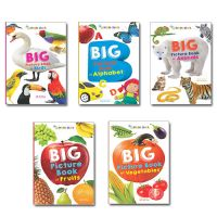 Pack of 5 Big Picture Books: Book by Priti Shanker