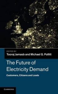 The Future of Electricity Demand: Customers, Citizens and Loads: Book by Tooraj Jamasb , Michael Pollitt