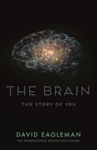 The Brain (English) (Paperback): Book by David Eagleman