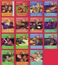 Secret Seven 15 copy box set INDIA (English) (Paperback): Book by Enid Blyton