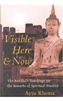 Visible Here and Now: The Buddha's Teachings on the Rewards of Spiritual Practice: Book by Ayya Khema