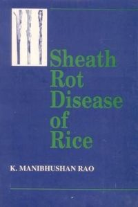 Sheath Rot Disease of Rice: Book by Rao Manibhushan