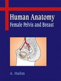 Human Anatomy : Female Pelvis and Breast | Book by A  Halim | Best