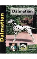 Dalmatian: Book by Frances Camp
