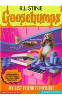 My Best Friend is Invisible: Book by R. L. Stine