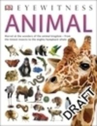 Animal: Book by Tom Jackson
