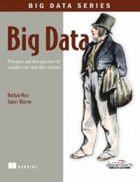 Big Data : Principles and Best Practices of Scalable Real - Time Data Systems (English) (Paperback): Book by Nathan Marz, James Warren