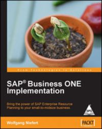 SAP Business ONE Implementation 1st Edition: Book by Wolfgang Niefert