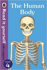 The Human Body - Read It Yourself with Ladybird Level 4 (English) (Paperback  Ladybird): Book by Ladybird