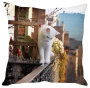 Stybuzz White Cat On Window Brown Cushion Cover