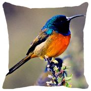 Fabulloso Leaf Designs Blue & Orange Bird Cushion Cover - 16x16 Inches