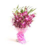 Ferns N Petals Perfect N Elegance_code-EXDFNP437