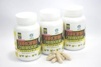 Thinq Garcinia Cambogia Capsules Pack Of 3