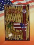 "Hsu""s Ginseng Long Small #2 (105.4) Cultivated American Roots 4oz"