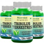 Morpheme Tribulus Terrestris Caps - 500mg Extract - 60 Veg Caps - 3 Bottles