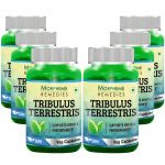 Morpheme Tribulus Terrestris Caps - 500mg Extract - 60 Veg Caps - 6 Bottles