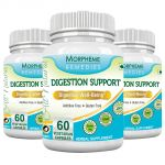 Morpheme Digestion Support 600mg Extract 60 Veg Caps - 3 Bottles