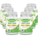 Morpheme Wheatgrass Supplements 500mg Extract 60 Veg Caps - 6 Bottles