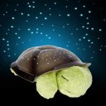 Lights For Bedroom Turtle Toy Light Music LED Light Stars Constellation Lamp With A Box