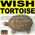 Feng Shui Wish Turtle Tortoise