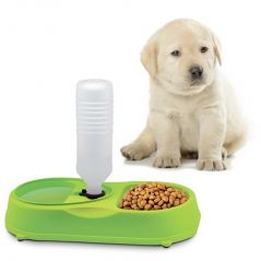 Automatic Water Refilling System Pet Feeder