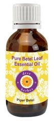 Pure Beetel Leaf Essential Oil - Piper Betle