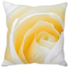 Stybuzz Cream Rose Cushion Cover