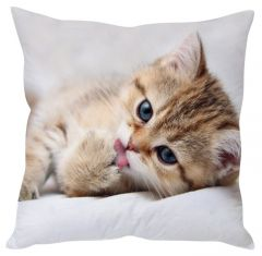 Stybuzz Cute Cat White Cushion Cover