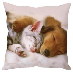 Stybuzz Cat And Dog White Cushion Cover