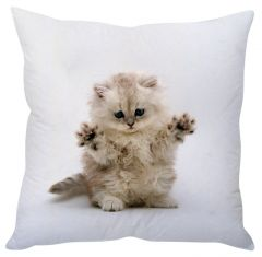 Stybuzz Playful Kitty White Cushion Cover