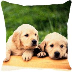 Leaf Designs Peeping Puppies Cushion Cover - Code  53863992091