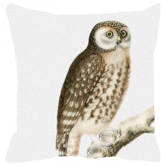 Leaf Designs Brown Owl Cushion Cover - Code  53864422091