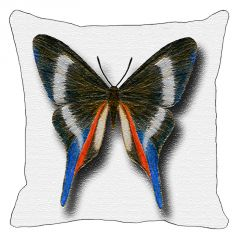 Leaf Designs Multi Coloured Butterfly On White Cushion Cover - Code  53864242091