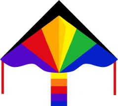 HQ Kites Eco Line  Simple Flyer Rainbow 47 inches Kite