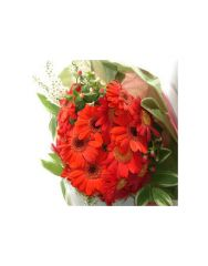 Gifts Valley Red Gerbera Bouquet Gift Items