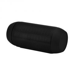 Bluetooth Portable Speaker Pulse