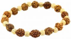 5 Mukhi Rudraksha With Golden Beads Bracelet
